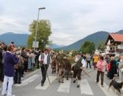 almfest-marienberg-alm-2013_108