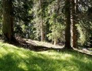 bergmesse-gacher-blick_010