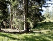 bergmesse-gacher-blick_011