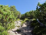 bergmesse-gacher-blick_013