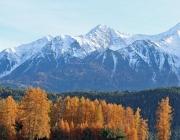 Goldener Herbst am Sonnenplateau Mieming