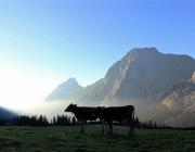 Ein Tag beim Hüttenteam auf der Hochfeldern Alm