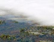 Tauwetter in den Moosalmwiesen