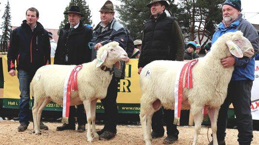 Die Gesamtsieger, Andreas Rott und Herbert Schuchter mit Gratulanten, Foto: Knut Kuckel