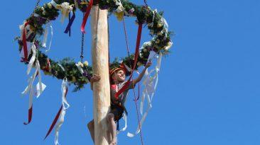 Die Baumkraxler waren beim Maifest in See in ihrem Element, Foto: Knut Kuckel