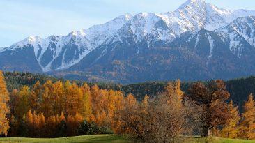 Im Herbst leuchten die Mieminger Lärchen goldfarben, Foto: Knut Kuckel