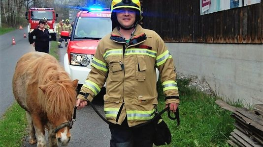Tierrettung in Obermieming – Absturz eines Ponys, Foto: Freiwillige Feuerwehr Mieming