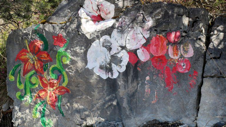 Steinblumen am Stöttlbach, Foto: Knut Kuckel