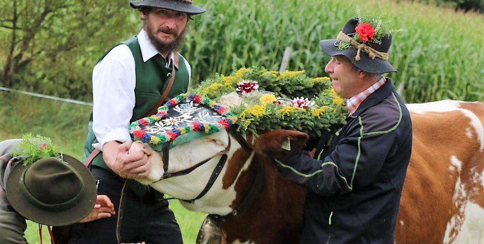 """""""Das ist eine Ehre für die Hirten, die das heuer zum ersten Mal miterleben"""", sagte Almobmann Klaus Scharmer. Foto: Knut Kuckel"""