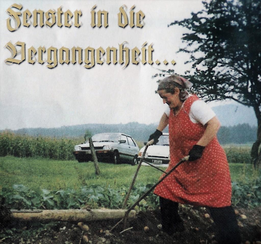 """Das Bild zeigt """"Schmieds Maria"""" - Larcher Maria in Obermieming bei der Erdäpfelernte. Foto: Siegfried Plattner"""