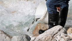 Wiederansiedlungsprojekt: Am Wochenende wurden im Stöttlbach weitere Forellen ausgesetzt. Foto: Knut Kuckel