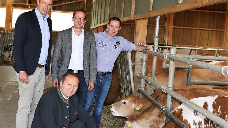 (von links) Michael Wurzrainer (Projektverantwortlicher der Rinderzucht Tirol), Josef Geisler (LHStv.), Thomas Danzl (GF Landeskulturfonds) und Bauer Hannes Post. Foto: Knut Kuckel
